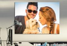 Plexiglass ufficio_esempio coppia con cane