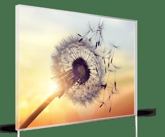 Plexiglass_soffione